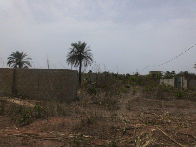 Empty plot of land in Tujereng