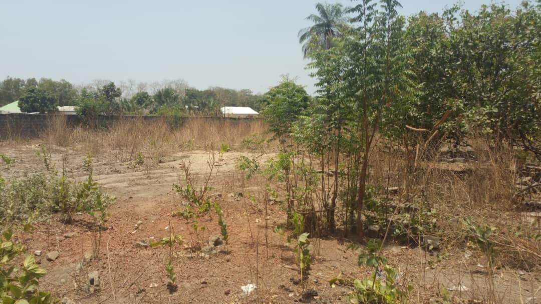 Empty Land Located at Farato