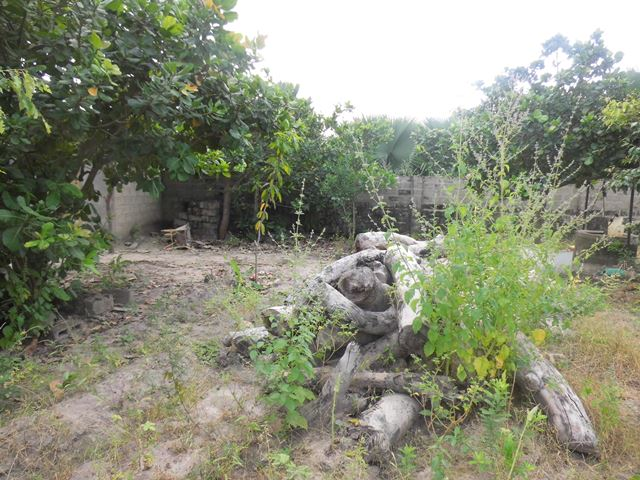 Empty plot of land for sale