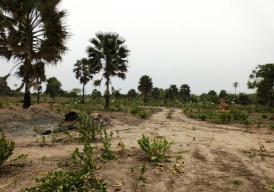 Sanyang Plots near Sanyang Beach