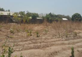 Empty Land Located at Farato