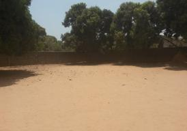 Empty corner plot in Lamin
